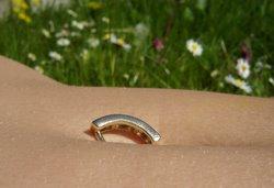 Summer field belly ring